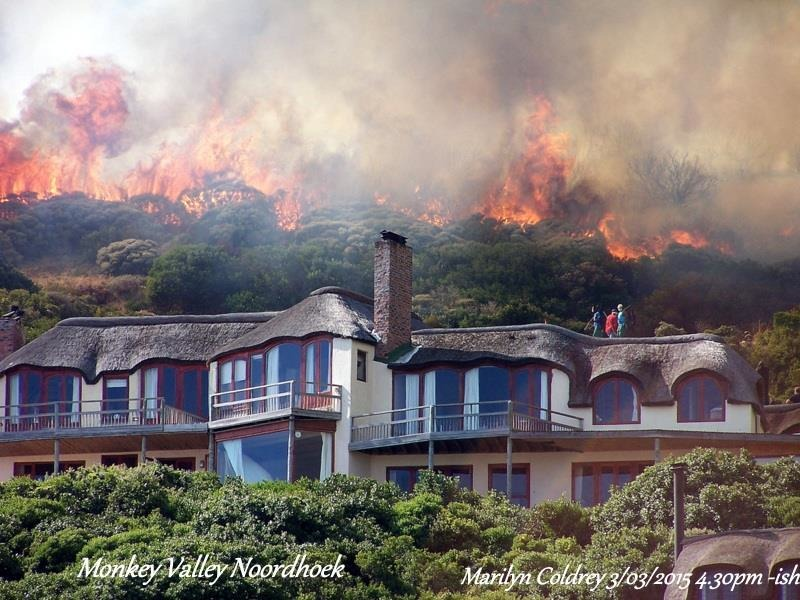 Ike Moriz Capefire Hout Bay Heroes In red Volunteer wildfire services 3 Marilyn Coldrey Monkey Valley